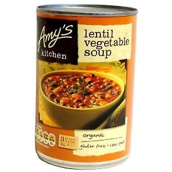 Amys - soupe de légumes aux lentilles