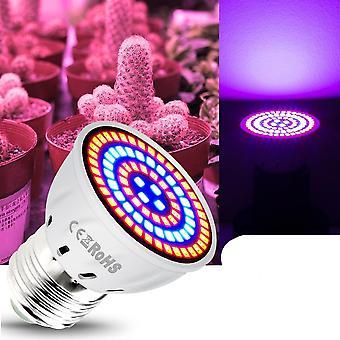 220v Led Grow Light Lamp For Plants With Full Spectrum