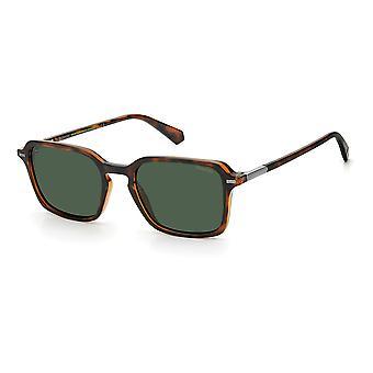 Polaroid PLD2110/S 086/UC Havana/Grønn Polariserte solbriller