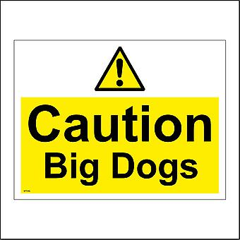 WT046 Caution Big Dogs Sign with Triangle Exclamation Mark