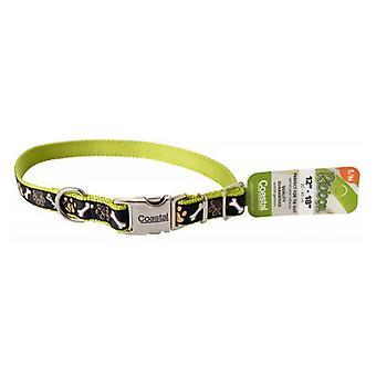 "Pet Attire Ribbon Brown Paws & Bones Adjustable Nylon Dog Collar with Metal Buckle - 12""-18"" Long x 5/8"" Wide"