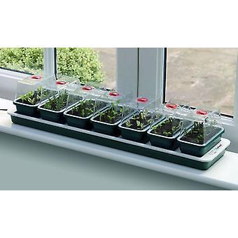 Super 7 Electric ikkunalaudalla Propagator istutus Gardenig
