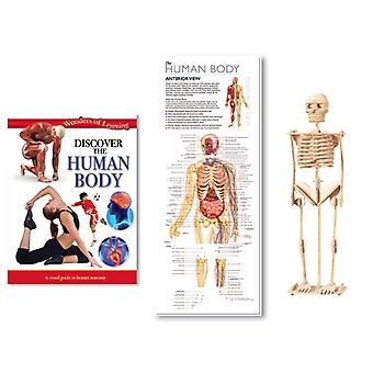 Wonders of Learning Discover Human Body Tin Set