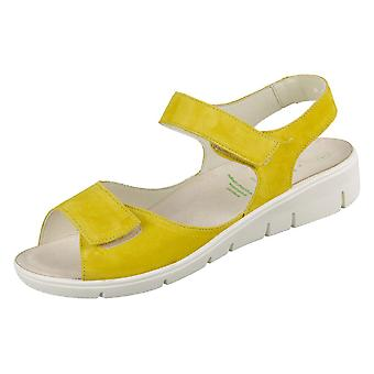 Solidus Honey 7601060243 universal summer women shoes
