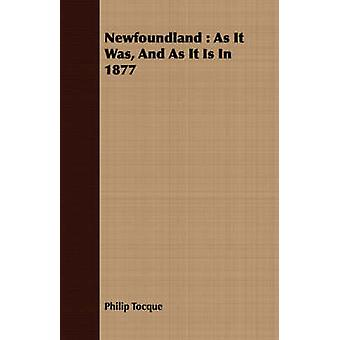 Newfoundland  As It Was And As It Is In 1877 by Tocque & Philip