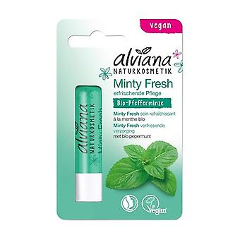 Minty Fresh Lip Care 4,5 g