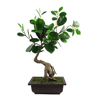 50cm künstliche Ficus abgerundetBlatt Bonsai Baum