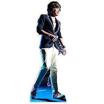 Harry Styles One Direction Lifesize Cardboard Cutout