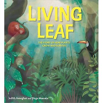 Plant Life Living Leaf by Judith Heneghan