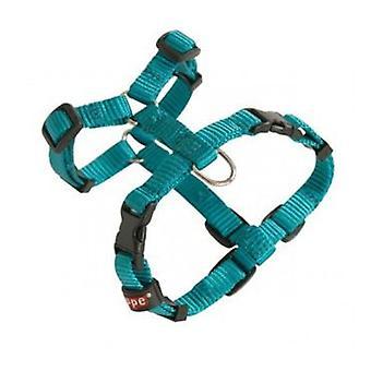 Arppe Tuigje Nylon fundamentele Turquoise (honden halsbanden, Leads en harnassen, harnassen)