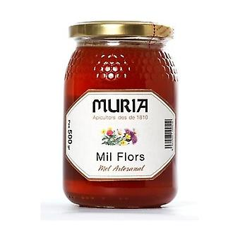Poliflora Honey 500 g
