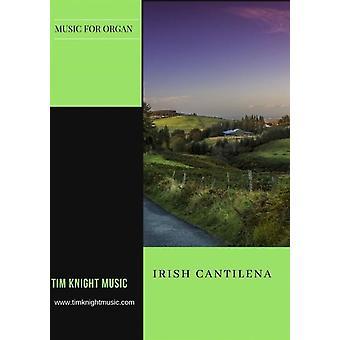 Irish Cantilena Tim Knight  Tim Knight Music