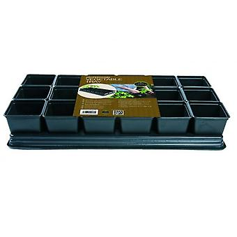 Vegetable Tray 18 x 9cm Sq Pots For Growing Peppers, Cucumbers, Chilli's & Tomatoes Gardening