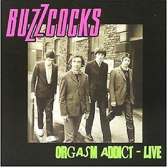 Buzzcocks - importación de orgasmo USA Addict en vivo [CD]