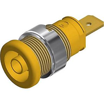 SKS Hirschmann SEB 2620 F6,3 Safety jack socket Socket, vertical vertical Pin diameter: 4 mm Yellow 1 pc(s)
