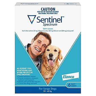 Sentinel taajuuksien suuri koira 6 pack