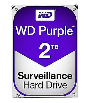 Wd Purple Surveillance Festplatte