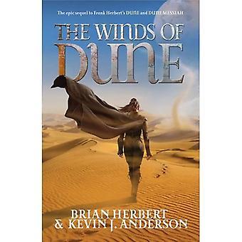 I venti della duna
