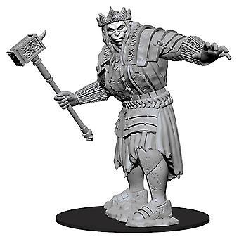 Dungeons & Dragons: Nolzur's Marvelous Unpainted Miniatures (W7) Fire Giant
