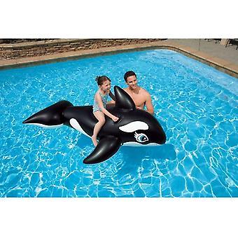 58561EP - Reittier Whale, 76 x 47 Zoll