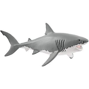 Ant farms white shark