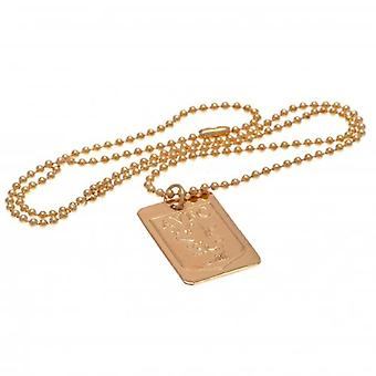 Aston Villa Gold Plated Pendant & Chain DT