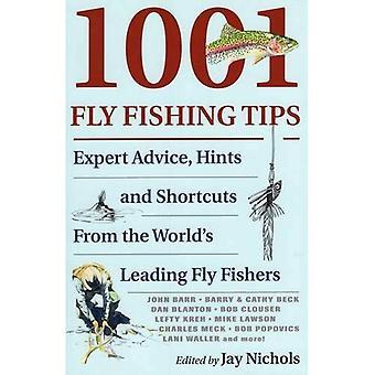 1001 flyga fisketips: expertråd, tips och genvägar