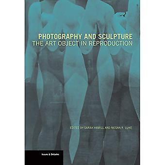 Fotografi och skulptur - Konsten anmärker i reproduktion (Häftad)