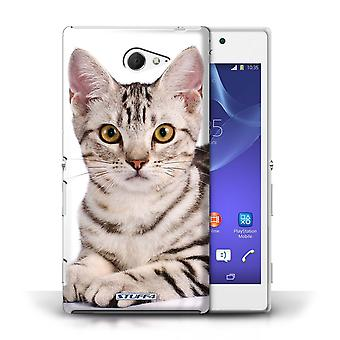 STUFF4 Case/Cover for Sony Xperia M2/American Shorthair/Cat Breeds