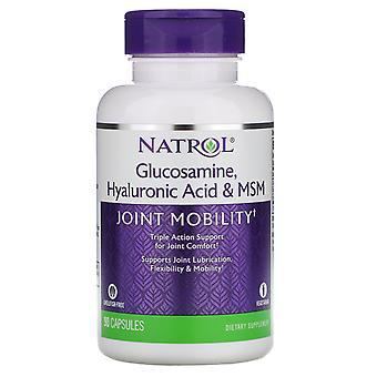 Natrol, Glucosamine, Hyaluronic Acid & MSM , 90 Capsules