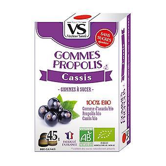 Blackcurrant propolis gums 45 g