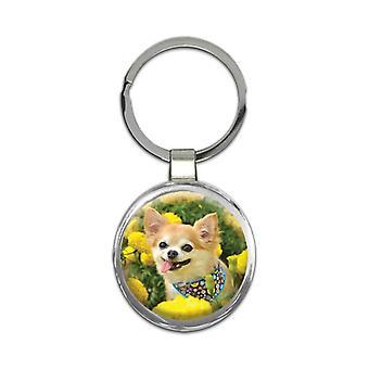 מחזיק מפתחות מתנה: חיית מחמד צ'יוואווה