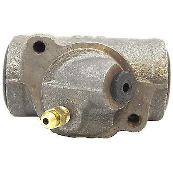 Raybestos 49263 Drum Brake Wheel Cylinder