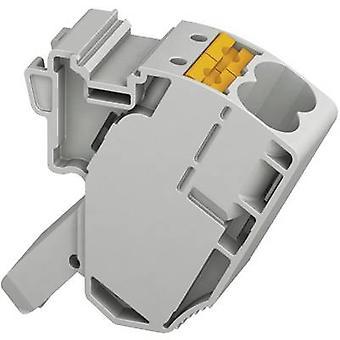 Phoenix Contact AGK 10-PTPOWER 3260145 Clip terminaalin nastojen määrä: 2 0,5 mm² 10 mm² harmaa 1 PCs()