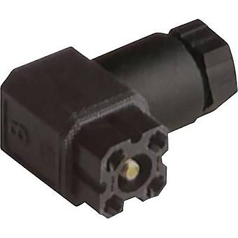 Hirschmann 932 157-100 G 4 W 1 F-Connector voor stuurspanning van zwarte aantal pinnen: 4