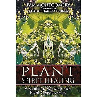 Plantera ande Healing - en Guide till att arbeta med anläggning medvetande av