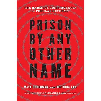 Prison by Any Other Name - The Harmful Consequences of Popular Reforms