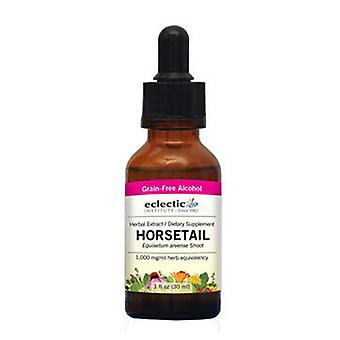 Eclectic Institute Inc Horsetail, 2 Oz avec alcool