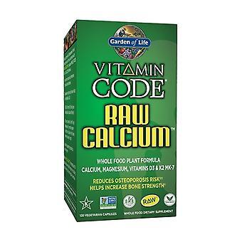 Vitamiinikoodi raaka kalsium 120 kasviskapselit