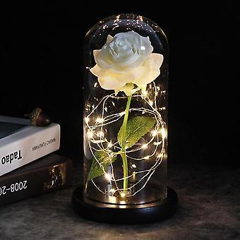 導かれた魅惑銀河ローズ永遠の箔の花と妖精の文字列ライトドーム