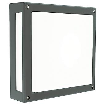 Geïntegreerde LED buitenmuur, plafondlamp, grafiet, IP65