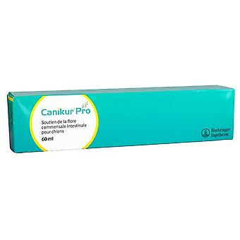 Marque Dietary Supplement Canikur Pro (Dogs , Supplements)