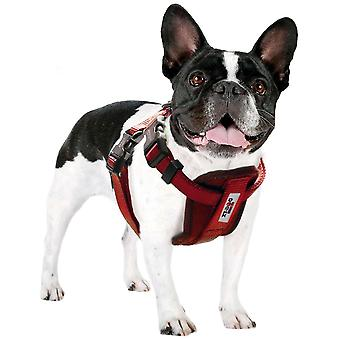 Xt-Dog Xtdog Harness (Dogs , Collars, Leads and Harnesses , Harnesses)