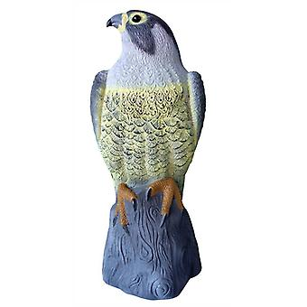 Falke Vogel Abschreckung