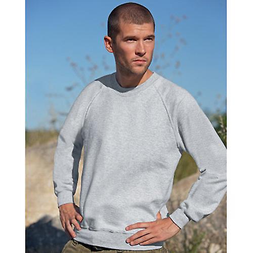 ac3f61fb5d9 Fruit of the Loom Raglan Sweatshirt