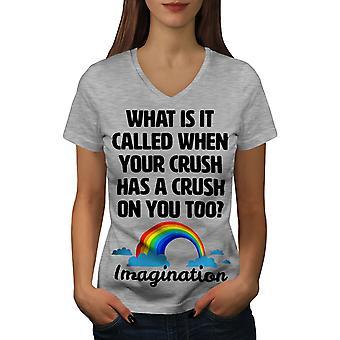 Crush Imagination Funy Women GreyV-Neck T-shirt | Wellcoda