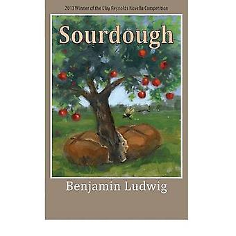 Surdeg av Benjamin Ludwig - 9781680030143 bok