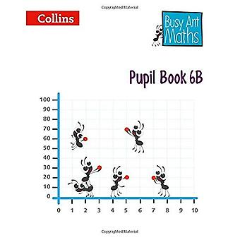 Occupé l'édition européenne de Maths Ant - livre de l'élève 6 b