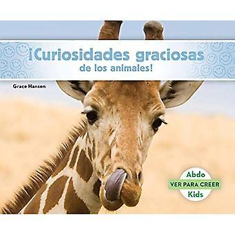 Curiosidades Graciosas de Los Animales! (Dyr fakta å gjøre deg Smile!) (Ver Para Creer (Seeing Is Believing))