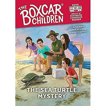 Havssköldpaddan mysteriet